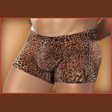 Pouch Short Nylon-Lycra Animal  Brown Leopard Smal