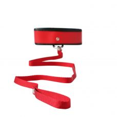 Sex and Mischief Leash and Collar - Red