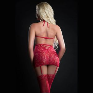 4pc Curve Hugging Dress With Panty Garter and  Pasties - One Size - Red Berry